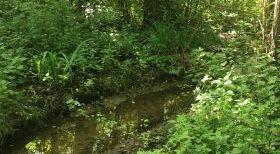Enquête publique relative au programme pluriannuel de restauration, d'entretien et de maîtrise du ruissellement des bassins versants des affluents de l'Aisne