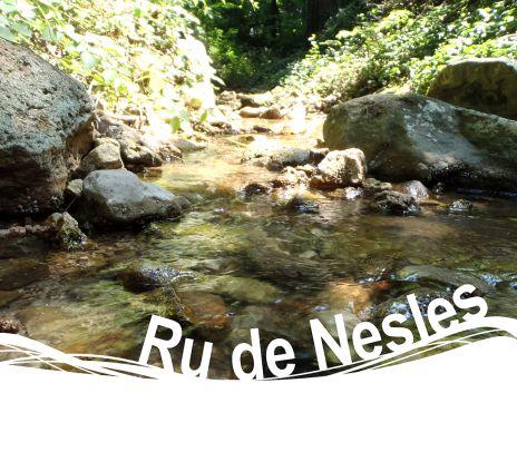 Ru de Nesles