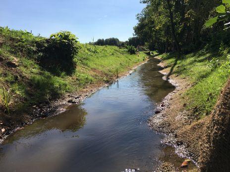 Rétablissement de la continuité écologique sur le ru de Retz - Dérasement du seuil de Coeuvres-et-Valsery