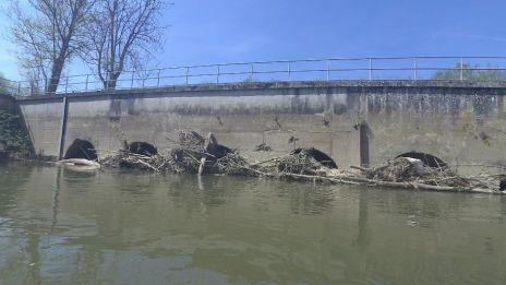 Désembâclement de la rivière Oise et de ses différents bras - Programme 1 - Tranche 1 - terminé